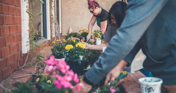 jardiner entre amis_1920x1080